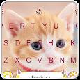 Lovely Kitty Keyboard Theme