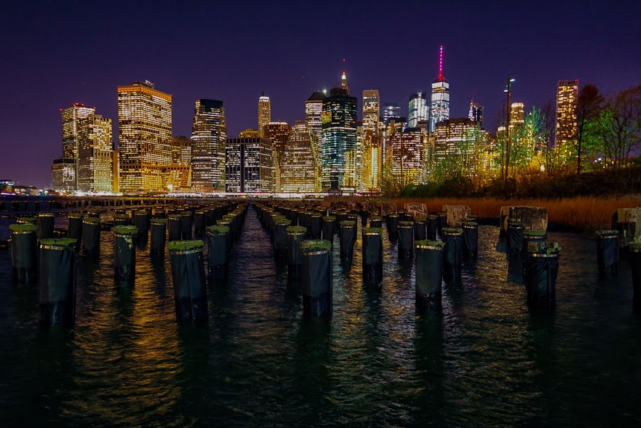 Manhattan and the Sticks by Carol Ward - City,  Street & Park  Skylines ( new york skyline at night, new york skline, new york city, new york, nyc, night shoot, nightscape, brooklyn pavilion, brooklyn )