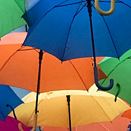 Under the rain by Joyce Thomas - Artistic Objects Other Objects ( rain colorful umbrellas )