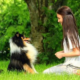Best friends by Jane Bjerkli - Animals - Dogs Portraits