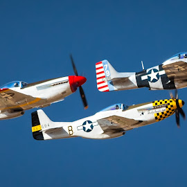 World War 2 Airplanes by Dave Lipchen - Transportation Airplanes ( sky, mustangs, propeller, three, three fighters,  )
