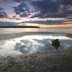 the blues by Rodrigo Layug - Landscapes Waterscapes