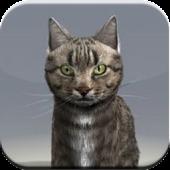 App Talking Cat APK for Kindle
