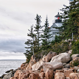 Bass Harbor Light by Margie Troyer - Buildings & Architecture Public & Historical