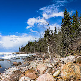 Beach During Ice Breakup by Dave Lipchen - Landscapes Beaches ( water, ice, rocky, shoreline, trees, beach, portrait )