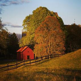 öst by Issam Shaheen - Instagram & Mobile Other ( uppsala, sweden, sverige, h, autumn )