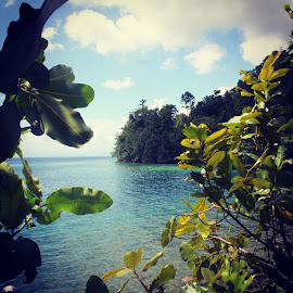 Morela's Beach View From Tree Point by Anto Sinaga - Landscapes Beaches ( sky, tree, indonesia, maluku, beach )