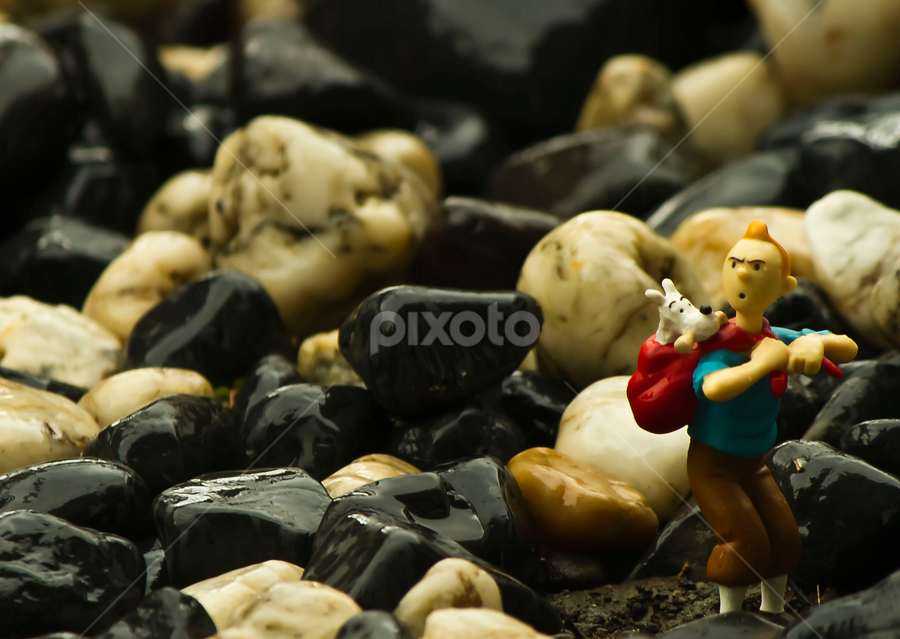 Tintin & Snowy by Firman Tirtawidjaja - Artistic Objects Toys ( pwcstilllife,  )