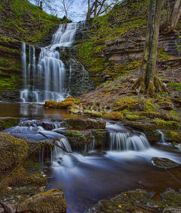Scaleber Force by Steve BB - Landscapes Waterscapes ( silk, uk, yorkshire, waterscape, malham, waterfall, landscape, milky, rocks, scaleber force, nidderdale, malhamdale )