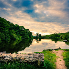 by Martin Tyson - Landscapes Sunsets & Sunrises ( water, canon, uk, throxanby, location, lake, landscape, 5d, scarborough, north yorkshire, tree, yorkshire, sunset, summer, trees, woodland )