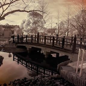 kairakoen Mitoshi by Janiar Putra - City,  Street & Park  City Parks ( landescape )