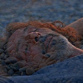 by Pixie Simona - Digital Art People ( portraiture, double exposure, pebbles, beach, portrait, man )