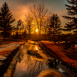 Edmonton City Park by Joseph Law - City,  Street & Park  City Parks ( melting, snow, trees, reflections, golf, sunshine, walkway, edmonton, city park )