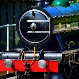 Mini locomotive by Nic Scott - Transportation Trains ( mini locomotive, railway, locomotive, train,  )