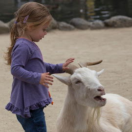 At The Petting Zoo by Janet Marsh - Babies & Children Children Candids