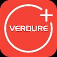 Verdure International
