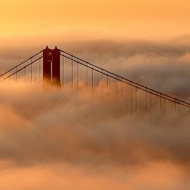 Foggy Gate by Lee Molof - Buildings & Architecture Bridges & Suspended Structures (  )