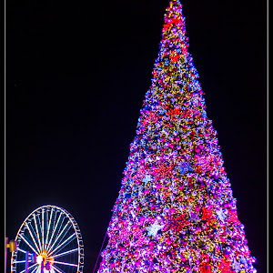 National Harbor Christmas Tree and Ferris Wheel Lit Up.jpg