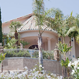 A Beautiful Entrance by Sherry Hallemeier - Buildings & Architecture Homes ( residence, bushes, residential, greenery, palm trees, buildings, pine trees, landscape, flowers, stucco, homes, garden )