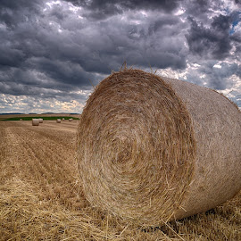 Time To Collect by Marco Bertamé - Landscapes Prairies, Meadows & Fields ( field, clouds, dry, hay, summer, round, grey, brown, circle, harvest, hay bale, dloudy )