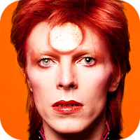 David Bowie is pour PC (Windows / Mac)