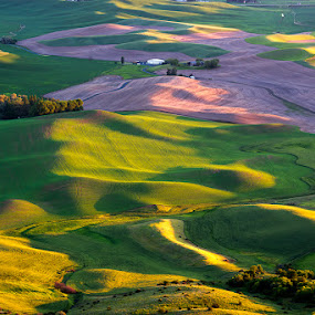 Palouse by Peter Cheung - Landscapes Mountains & Hills ( palouse )