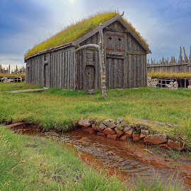 Viking´s cabin 2 by Michaela Firešová - Buildings & Architecture Other Exteriors ( viking, cabin, iceland, green roof, wooden house )