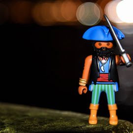 The pirate king by Anto Boyadjian - Artistic Objects Toys ( playmobil )