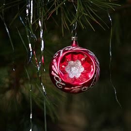 by Miroslava Winklerová - Public Holidays Christmas