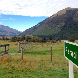 Paradise by Donna Racheal - Landscapes Prairies, Meadows & Fields ( countryside, nature, paradise, landscape, new zealand )