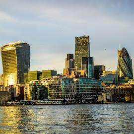 Sunset in City of London by Gábor Kallós - City,  Street & Park  Skylines ( city of london, gherkin, skyscraper, london, sky garden, walkie-talkie )