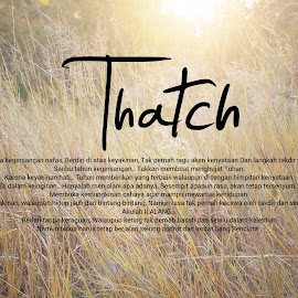 Thatch by Ecenk Eng - Typography Quotes & Sentences ( savannah, nature, indonesia, east java, flare, landscape, typography, photography )
