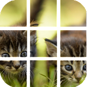 Game kitties Puzzle apk for kindle fire