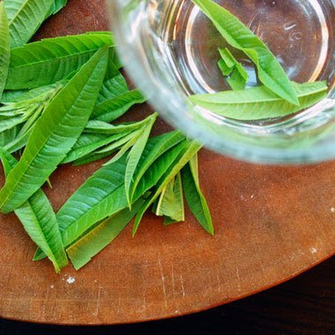 Lemon Verbena Simple Syrup
