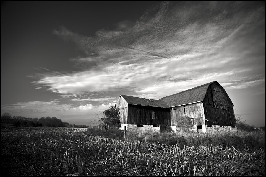 Old Barn by Alastair Macpherson - Landscapes Prairies, Meadows & Fields ( pwcbwlandscapes )