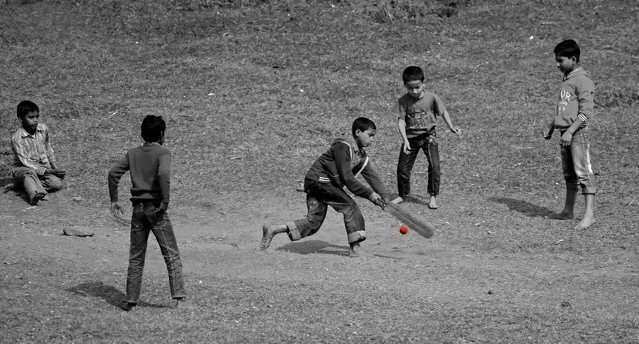Future champions by Satya Adt - Sports & Fitness Cricket ( cricket )