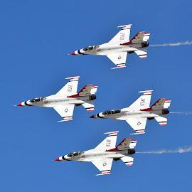 The Thunderbirds by Gosia Lukowiak - Transportation Airplanes ( f-16, plane, transportation, airshow )