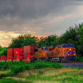 by Karen McKenzie McAdoo - Transportation Trains