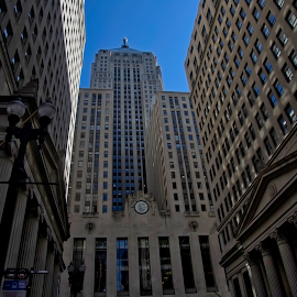 Chicago Board of Trade  by Jim Signorelli - Buildings & Architecture Office Buildings & Hotels ( sky skrapers, chicago, chicago board of trade )