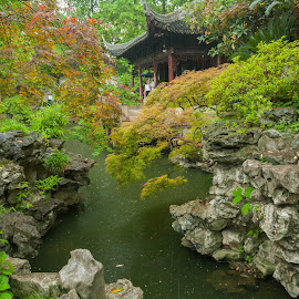Tranquil by Victor Mukherjee - City,  Street & Park  City Parks ( chinese, greenery, china, plants, garden )
