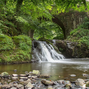 Arbirlot by Iain Cathro - Landscapes Waterscapes ( scotland, arbirlot, waterfall, bridge, leaves )