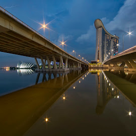 Marina Bay Sands, Singapore at Dawn by Carol Kheng - Buildings & Architecture Office Buildings & Hotels ( #singapore, #benjaminshearesbridge, #marinabaysands, #mbs, #gardensbythebay, #dawn )