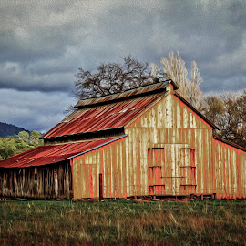 Ranch Barn  by Janice  Carabine - Buildings & Architecture Decaying & Abandoned ( barn, tin roof, cloudy )