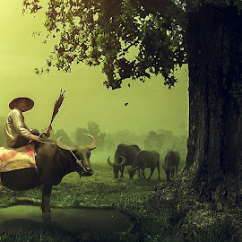 The peace in the countryside by Sơn Hải - Digital Art Places ( countryside, foggy, tree, grass, fog, asia, vietnamese, vietnam, pond, people, manipulation, asian, animal )