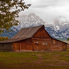 Moulton barn by Chad Fish - Buildings & Architecture Decaying & Abandoned ( farm, barn, moulton, wyoming, grand tetons )