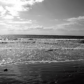 Out with the Tide by Michelle Baity - Landscapes Beaches ( water, shore, blackandwhite, bw, ocean, beach )