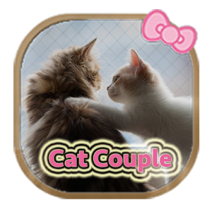 Lovely Cat couple theme