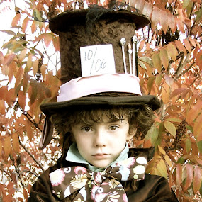 As Mad as a Hatter by Lori Lei Herr - Babies & Children Children Candids ( orange, storybook, fairy tale, green, children, hazel eyes, brown hair, leaves, people, mad hatter, child, color, autumn, fall, costume, brown, boy )