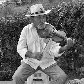 muzicant pe strada by Kati Raileanu - People Portraits of Men