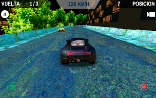Screenshot of Furious Racing Tribute